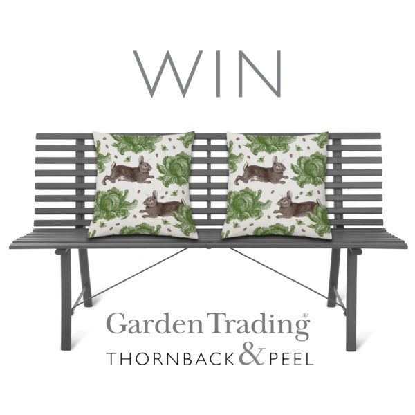 Thornback & Peel Rabbit & Cabbage cushions and Garden Trading Battersea Bench